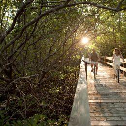 Radfahren im Lovers Key State Park