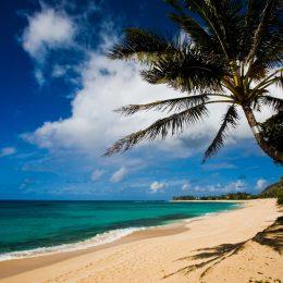 Strand auf Oahu