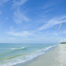 Strandleben in Fort Myers Beach