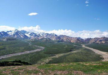 Denali National Park: Rund um Nordamerikas höchsten Gipfel
